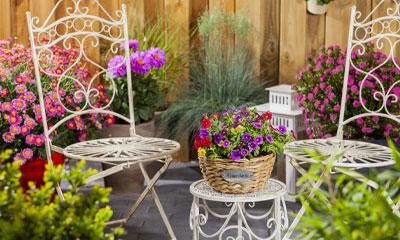 Telefonansagen Blumen- & Gartencenter